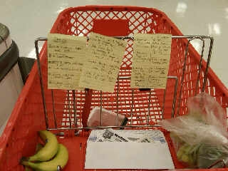 Hahaha!  See the Post-It Note lists I made to accompany the coupons!?